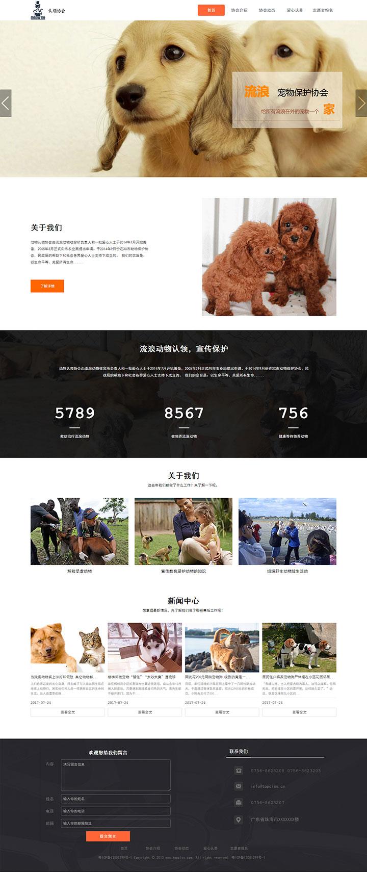 流浪动物保护协会